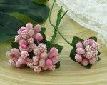 Ягодная гроздь розовые