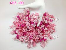 GP2 - 00