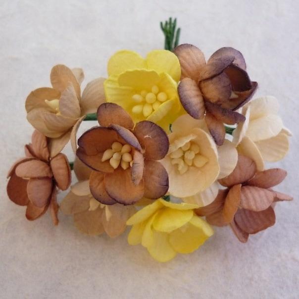 Цветы вишни микс в коричневых тонах