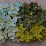 Лилии микс в зеленых тонах 4 шт 3 см