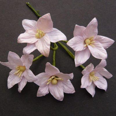 Лилии розовые 5 шт 3 см