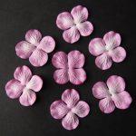 Гортензии розовые