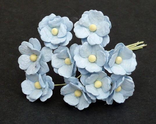 Флоксы детский голубой, 10 шт, 1,5 см