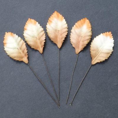 Листья розы, тонированные коричневые 3,5 см, 10 шт