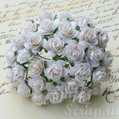 бумажные цветы и розочки ручной работы для скрапбукинга и декора