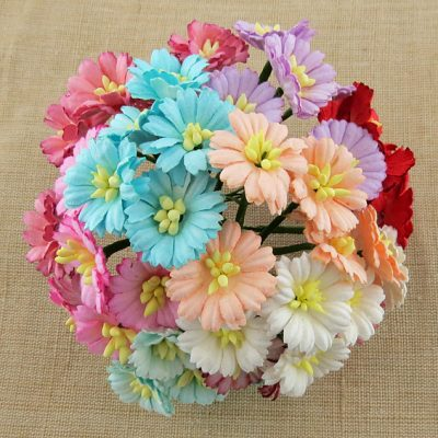 Маргаритки микс цветов, 10 шт 2.5 см