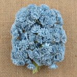 Гипсофилы детский голубой, 1 см, 10 шт