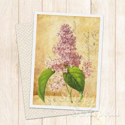 """Нашивка """"Почтовая карточка-цветы-02"""", лен или хлопок, 7х9 см"""
