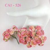 CA1 - 526