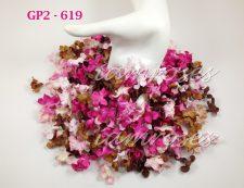 GP2 - 619