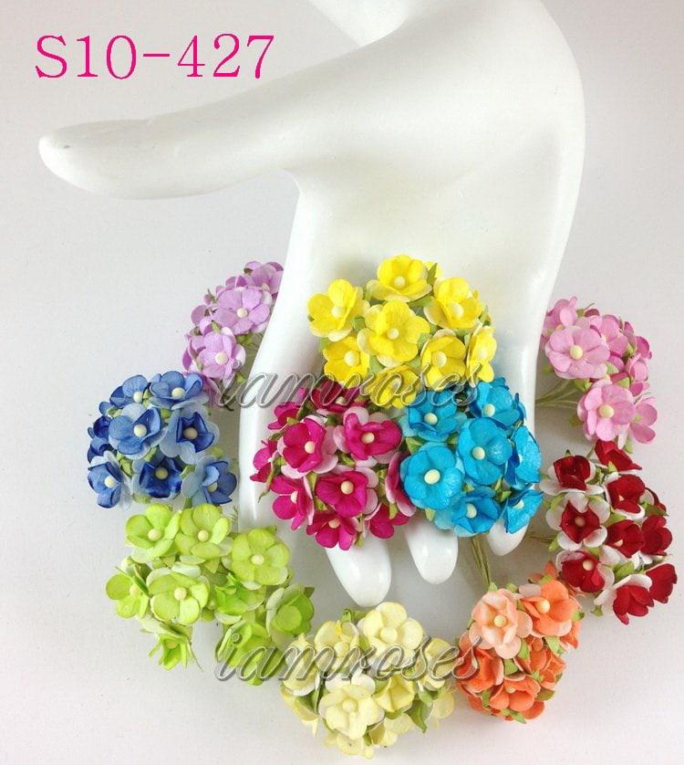 Флоксы 15 мм, микс цветов, 10 шт