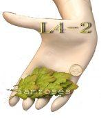 ZQ L 4 - 2
