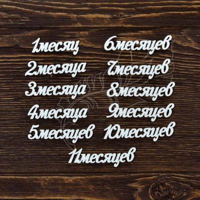 "Чипборд ""Набор надписей 11 месяцев"" (Арт Лайн), 11 эл."