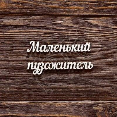 """Чипборд """"Надпись Маленький пузожитель"""" (Арт Лайн), 1 эл."""
