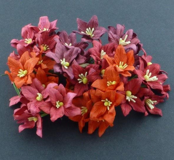 Лилии микс в красных тонах,  4 шт, 3 см