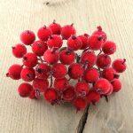 Зимние ягоды 12 мм, красный, 5 шт.