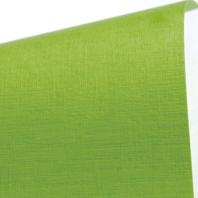 "Дизайнерская бумага с тиснением ""Сирио"", цвет лайм, А4, 290 г/м2."