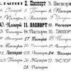 """Надпись из термотрансфера """"Паспорт"""""""