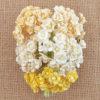Мини флоксы 10 мм, желтый микс, 10 шт