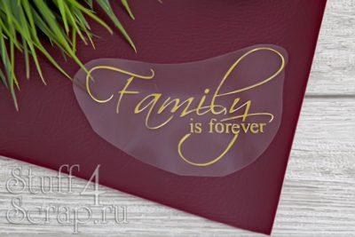 """Картинки из термотрансфера """"Family is forever"""", 12*7.5 см"""