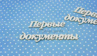 "Чипборд ""Первые документы 2"" (Рукоделушка), 2 эл."