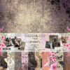"""Набор бумаги коллекции """"DREAMLAND""""(Summer Studio), 11 л, 30,5*30,5 см"""